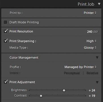 Print Job box in Lightroom Print module