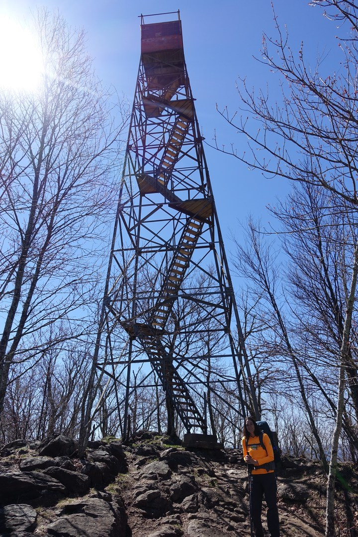 Gregory Bald  Shuckstack Fire Tower via Twentymile Loop