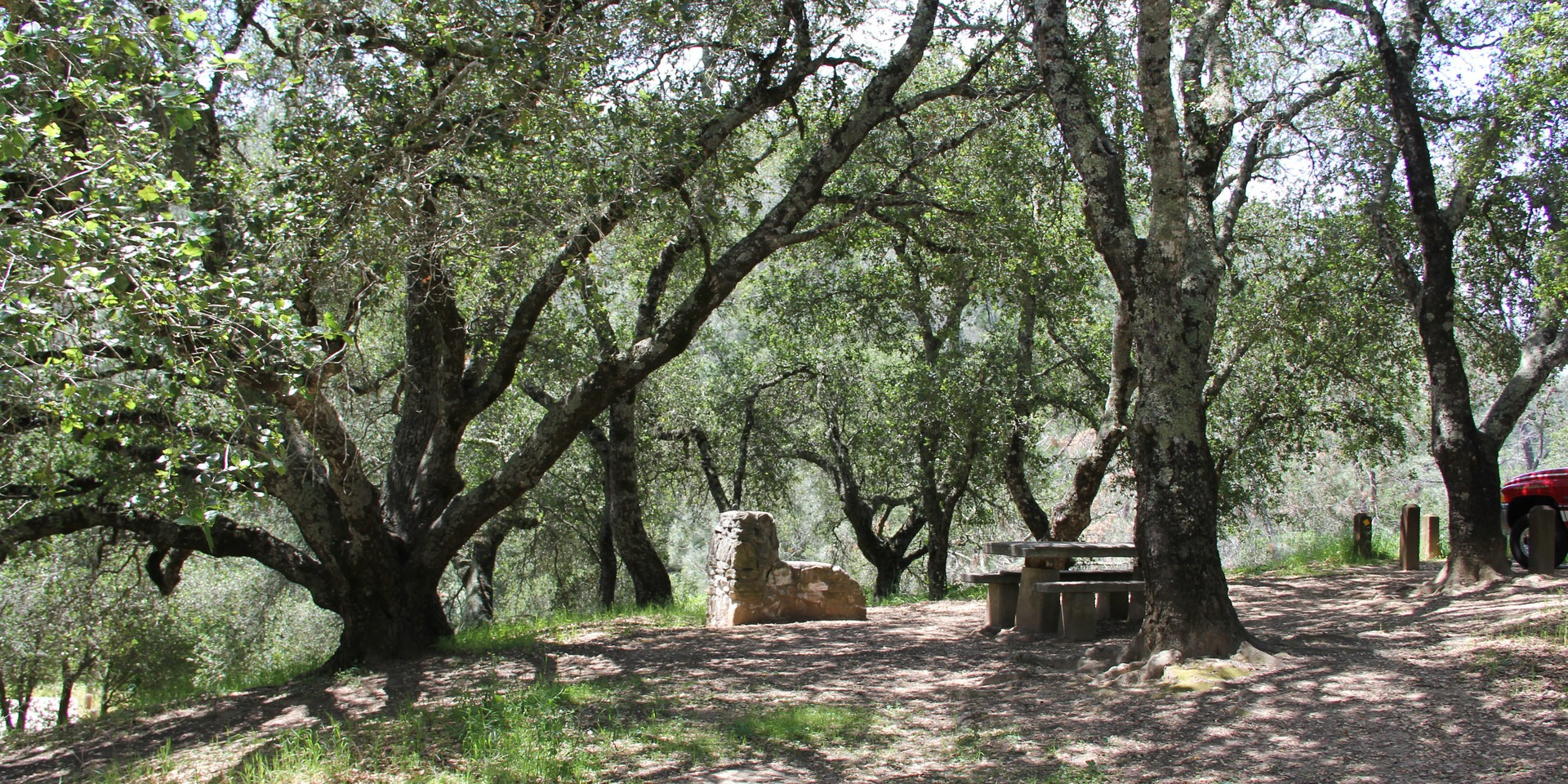 Find out how to visit this popular new jersey state park with information on the best hiking trails, what to do nearby, and more. Live Oak Campground Outdoor Project