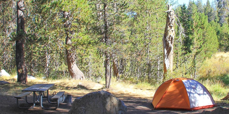 Bridalveil Creek Campground Yosemite National Park