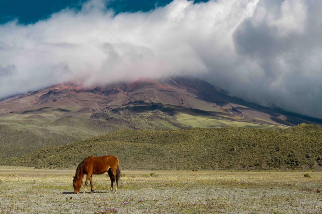 Cycling in Cotopaxi National Park