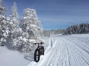 fat biking - cycle solutions image