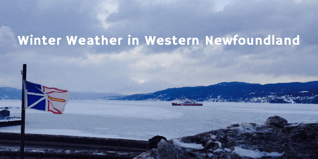 Q & A: How is the Winter Weather in Western Newfoundland?