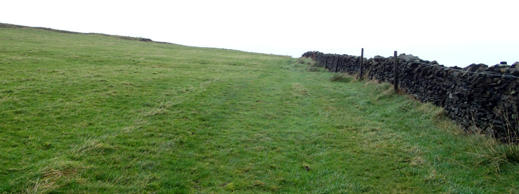 A very fmiliar sight on the South Pennines - crossing sheep grazing fields along the wall, again....