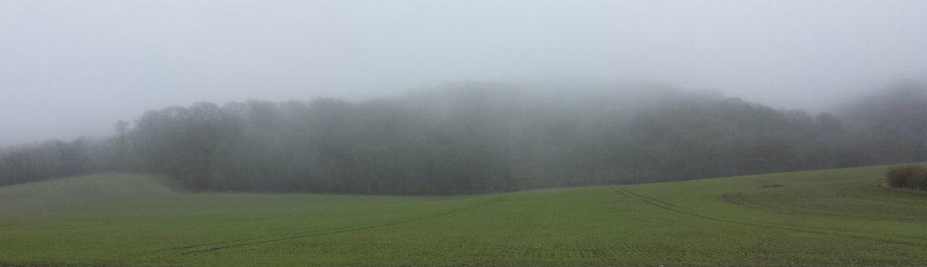 Misty morning in the South Downs national park