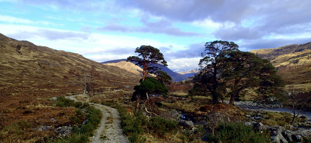 Reaching the end of Glen Cona, looking back to Ben Nevis