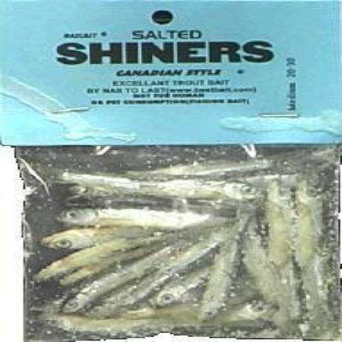 Best Bait Medium Salted Shinners Minnows 20  30 CT  For