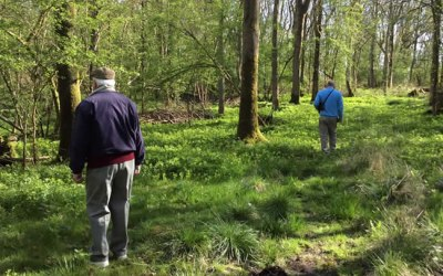 Experiencing woodland wellbeing