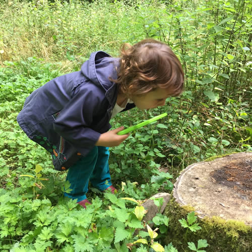 Wellbeing through nature connection