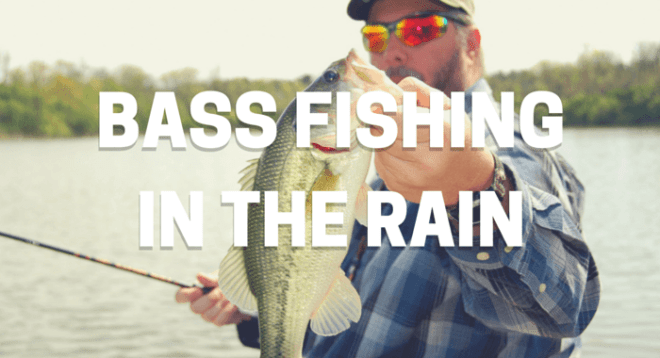 Bass Fishing In Rain