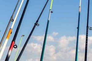 best-fishing-rod-reviews