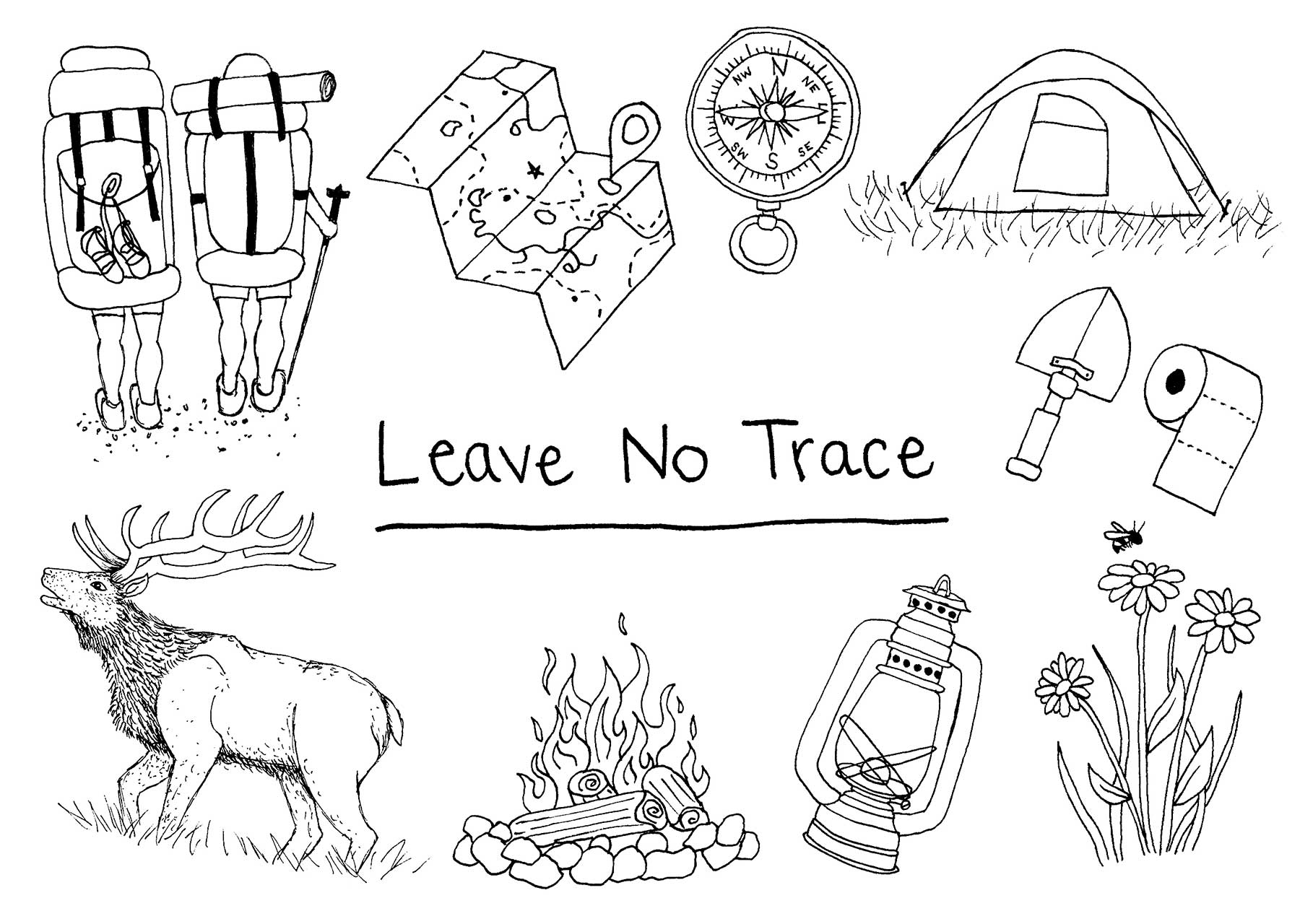 Leave No Trace Correcting Common Beliefs In The Wild