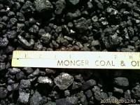 Outdoor Coal-Wood Burning Furnace-Stove-Boiler Burn both ...