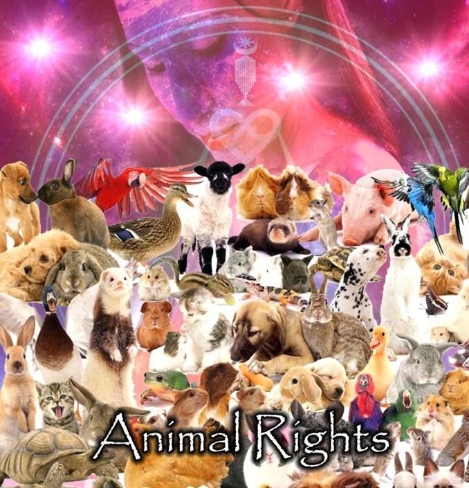 OL_Animal Rights copy