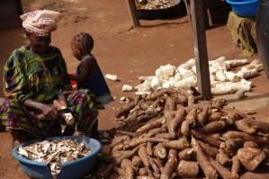 Cassavas