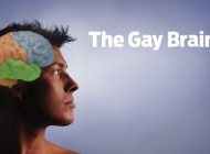 The Gay Brain: What makes us LGBT?
