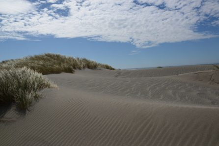 Pistol River Sand Dunes near Brookings