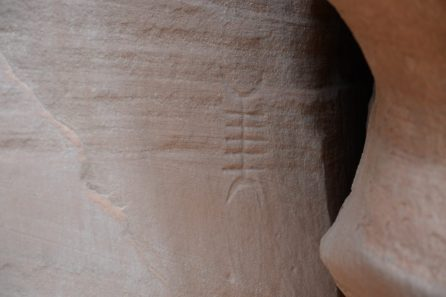 Petroglyph Canyon de Chelly