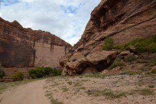 Desert Varnish streaks rocks in Canyon de Chelly