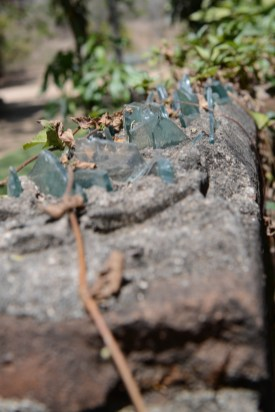 Glass shards make security fence at Los Osuna Tequila distillery Sinaloa Mexico