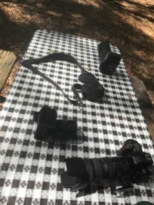 Cameras ready for any animal sightings Medard Park