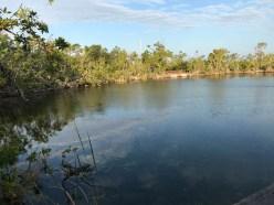 Blue Hole, Key Deer Wildlife Refuge