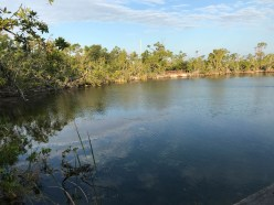 Blue Hole, Key Deer Wildlife Refuge