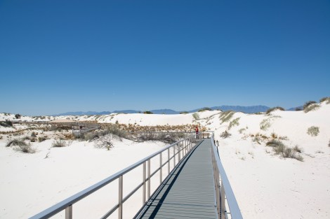 The boardwalk trail winds thru the dunes