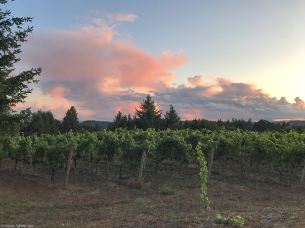 2019 The skies over Styring Vineyards are always a show