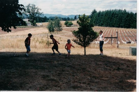 2004 the kids playing above the newly planted vines