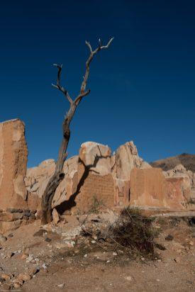 Ryan Ranch Ruins