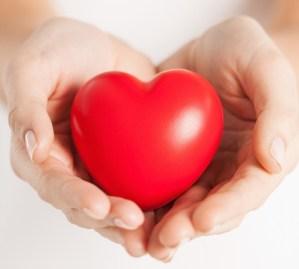 mito del colesterol y las grasas saturadas corazon sano