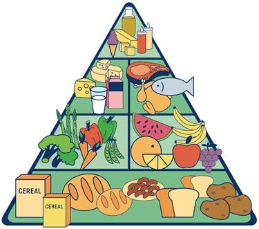 El engaño de la Pirámide Nutricional - Blog de OutletSalud.com
