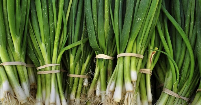know the health benefits of onion plant