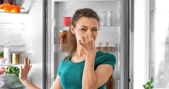 easy way to remove odor from room during this rainy season