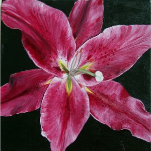 LILY Acrylic on block canvas 41 cm x 41 cm This was painted for my 2nd granddaughter, Lily.