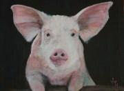 """Who said """"Pork Chops?"""" acrylic on canvas 25 x 20 cms"""