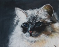 """Princess"" Acrylic on canvas 25 x 20 cms (commission your own pet portrait!)"