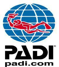 Padi - Curso Divemaster Trainee: Como Participar