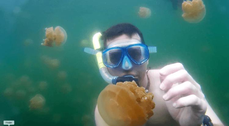 Lagoa de Águas Vivas de Palau