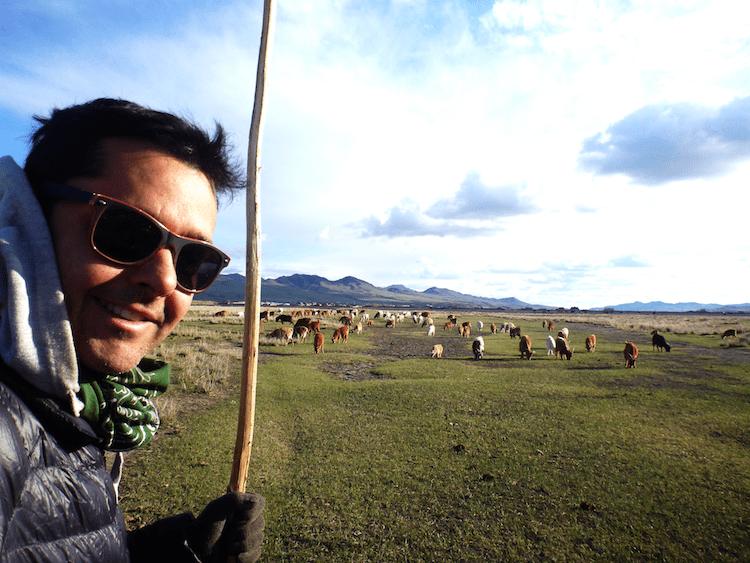 Pastoreio na Mongólia