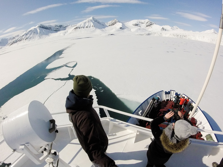 Searching for Svalbard wildlife