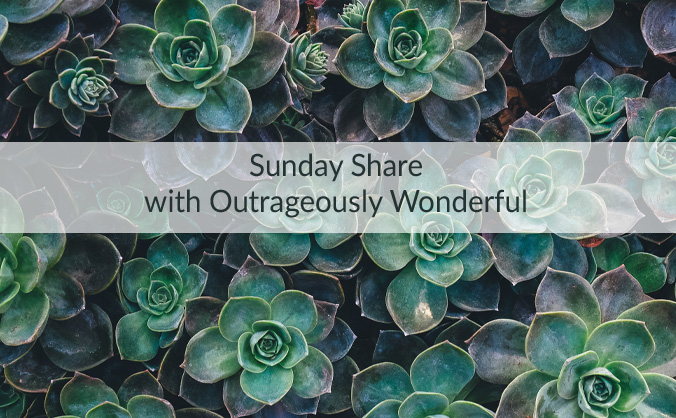 Sunday Share with Outrageously Wonderful I hope you have had a wonderful weekend and are ready for the week ahead! This week we are talking about kindness, participation, little moments and a movie I can't believe I waited until now to watch. You won't believe it either. I also share why I'm ending this weekend exhausted and renewed.