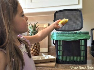 Home Composting for Beginners with Urban beach baby #summer #composting #green