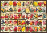 Seed Packet Collage | Outset Media Games