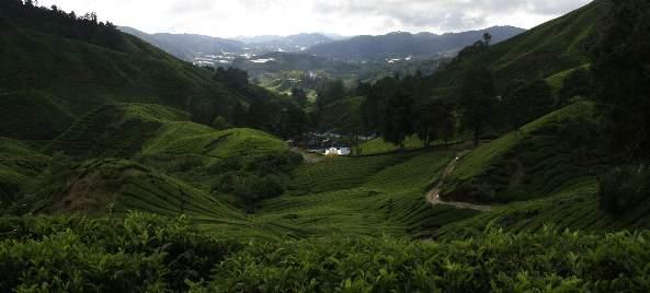 Malaysia: Highlands to Langkawi