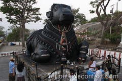 The famous Nadi Bull