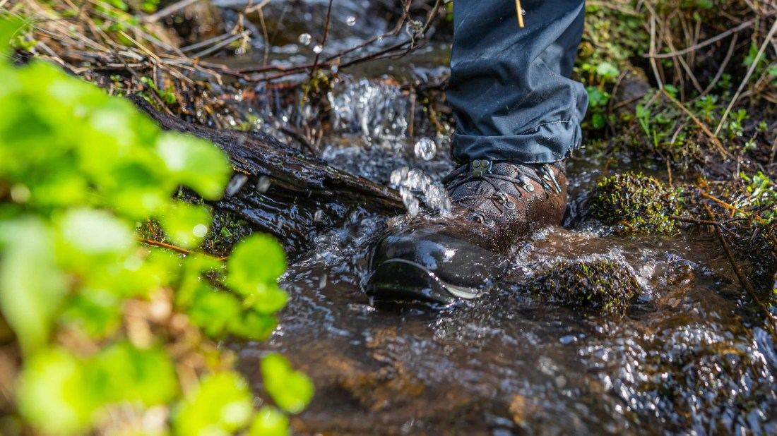 Which Footwear Is Right for Your Next Hike?
