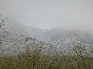 The Snow Coming Over The Mountains