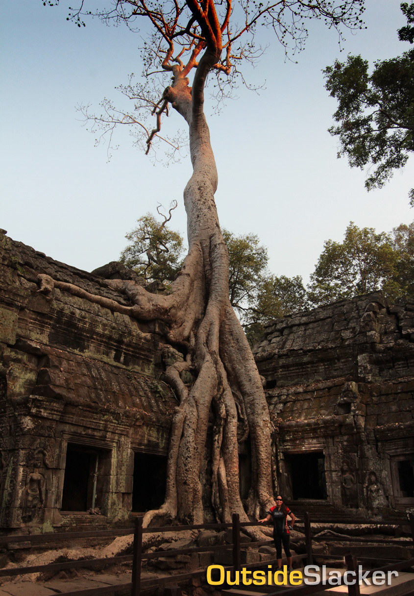 Ta Prohm temple ruins in Angkor Thom